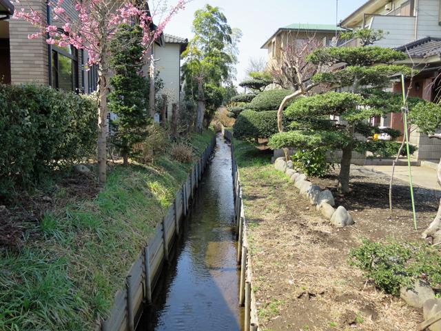 ちなみに新小平駅周辺はいい感じの用水路がたくさんあった