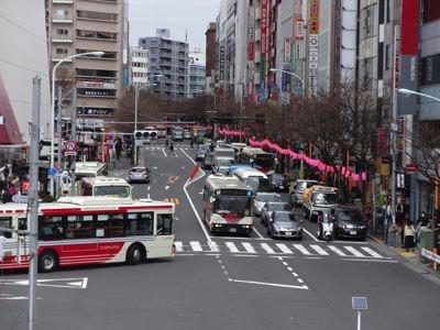 ここは季節になると桜の花の並木になる。