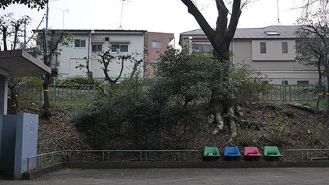 公園の風景。左には公衆便所が見える