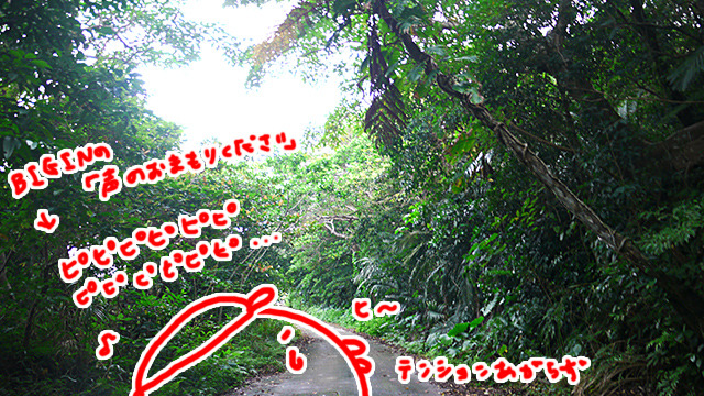 本物のジャングルで迷った。また泣きそうになった。ハブ出ませんように
