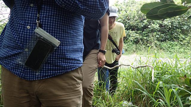 パンツを履いた西村さんを先頭に、それぞれにパンツを履いた状態で続くみなさん。写真に写っているヘビみたいなやつはクリハラさんが持っている棒です。