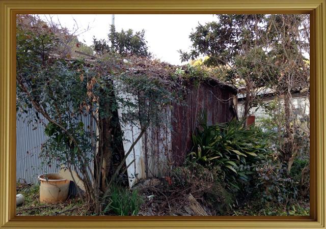 『繁茂』作者:植物 いかにも子どもたちの秘密基地になりそうな佇まい。持ち主のおっさんに怒られるところまで想像してしまう。