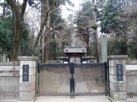 同地が開拓されたころから地域の菩提寺として信仰を集める、多福寺。その周辺に、見事な雑木林が広がっている
