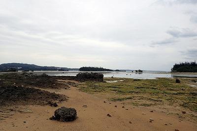 現地で「イノー」と呼ばれる遠浅の瀬へやってきた。