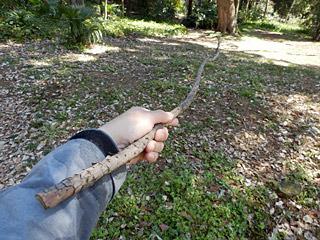 こういう時に落ちてる棒を拾って装備するのは、男の本能だろうか。