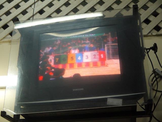 場内からは見えづらいのか、モニターにはスタートラインの映像が映されていた。