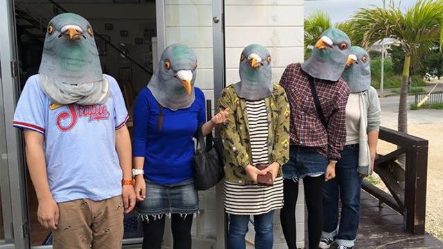 午前、ハトマスクを取りに来た参加者の皆さんと