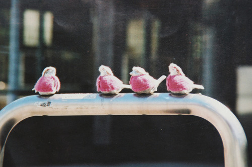 この写真、桜の季節の空気が伝わって来るようだった