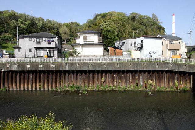 護岸が鉄板というのがなんとも二級河川らしい