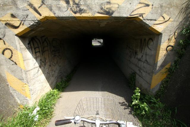 やけに天井の低いトンネルを屈みながら抜けると――