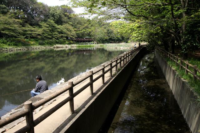 親水公園として整備されており、多くの人で賑わっている