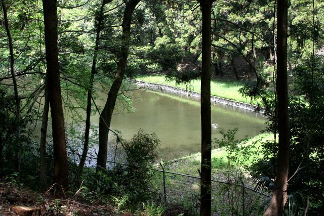 近寄ることはできないものの、遠目で池を確認できた