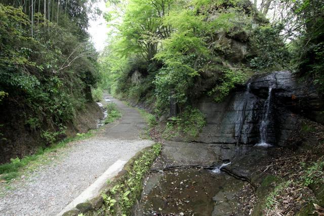 ちょっとした滝も見られ、歩いていて楽しい