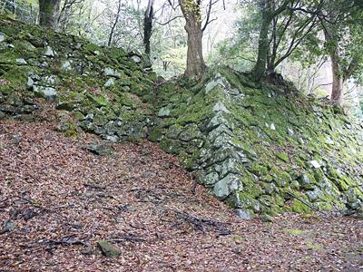 「この城は中世と近世の石垣を見られるんです」これは近世の穴太(あのう)積みでの石垣。
