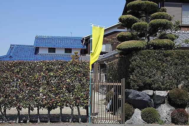 個人宅に掲げられた黄色の旗。ポスターよりいいかもしんない。政策とか判らないけど。