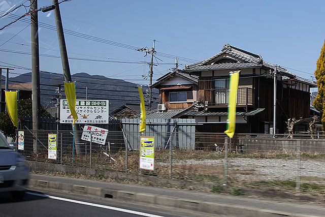 ここには4本の黄色旗が立ってた。支持者の土地なんだろう。