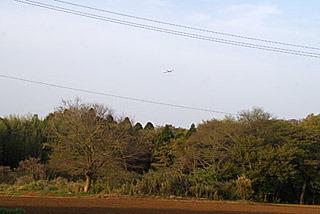 ふと見上げれば、成田空港から飛び立った飛行機がビューン。
