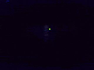 こんな感じで竿先の光をじっと見つめる訳です。