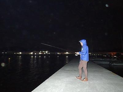 巨大サヨリは常夜灯の多い港でよく釣れるらしい。