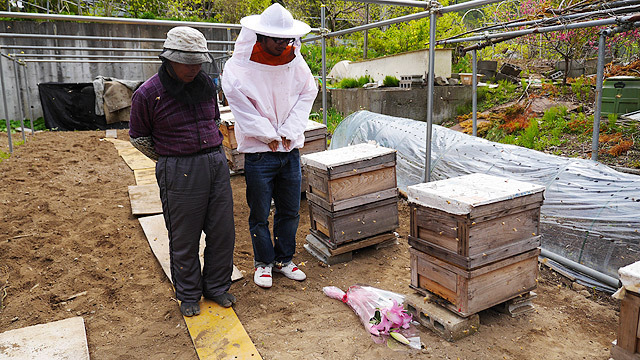 いつも働いてくれるミツバチに感謝してハチミツをプレゼント。思いつきの企画がいつのまにか防護服に身を包むはめに。飛んでるハチの数がまずい感じです。(安藤)