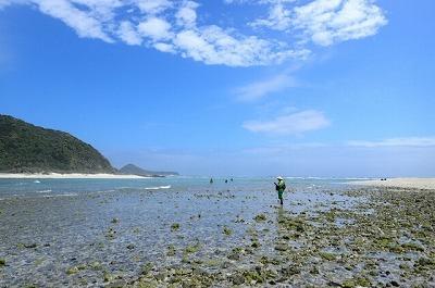 沖縄にありがちな遠浅の海岸。アワモチはこういう場所で簡単に採れる。