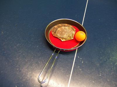 「ホタテにピンポン球を添えると料理っぽく見えるか?」という実験。誰も見えないとの実験結果が出た。