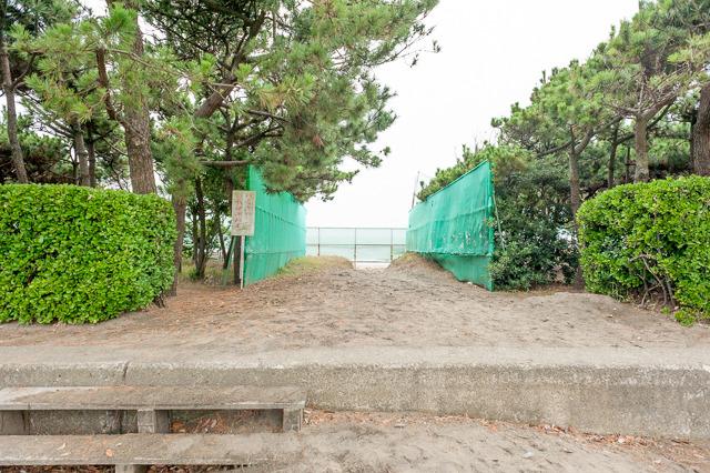 実際現在の海岸線である海浜公園には充実した防砂林があるが、それでも沿道はけっこう砂まみれだ。