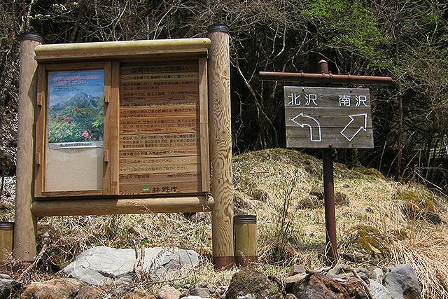 山道の分岐を示す看板の矢印。山道も矢印が多い。