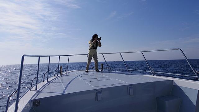 船首から釣り人を狙う