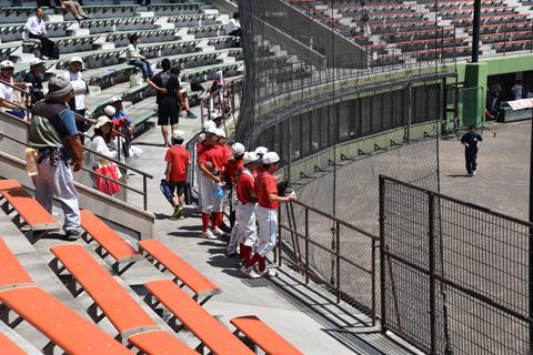 野球少年も熱視線