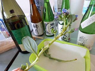 日本酒のつまみにいいような気もします。