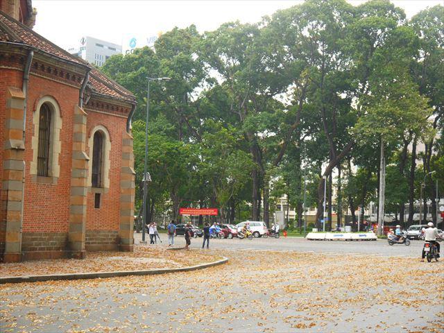 この日は強風が吹いていて落ち葉が多く秋の風景のよう(実際は真夏です)。