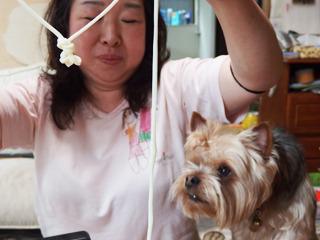 「結んじゃえばいいんじゃない? ホレ」犬も賛同しているように見えて、実は食べようとしている。