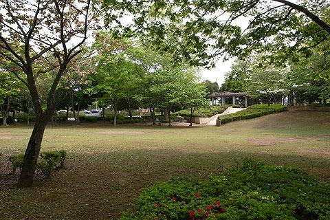 この公園なんかも、それほど思い入れがあったとは思えないのだが、なぜか夢にたびたび出てくる。