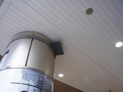 改札出口の柱に巣を作っていた。