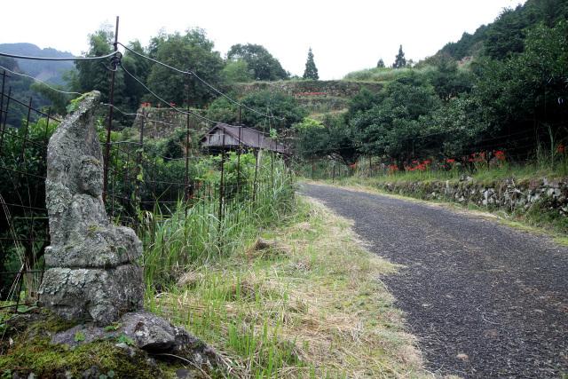 かつての参道は、アスファルトの道路として山頂付近まで続いている