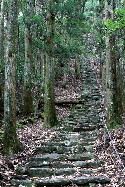しかし、真っ直ぐ伸びる石段は雰囲気抜群