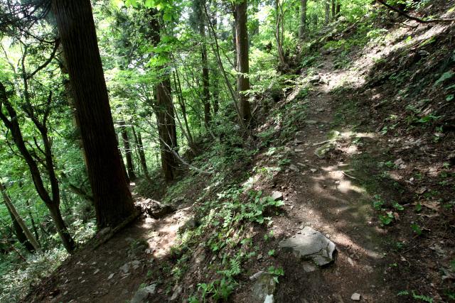 山頂に近くなると、九十九折りの山道となった