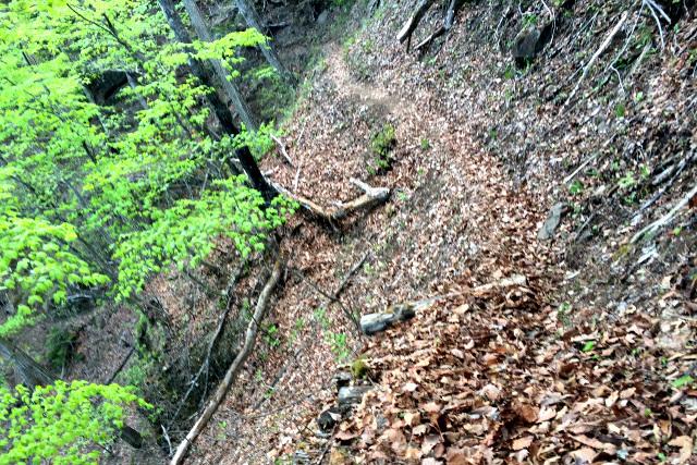 急斜面に加え、道はかなり狭い