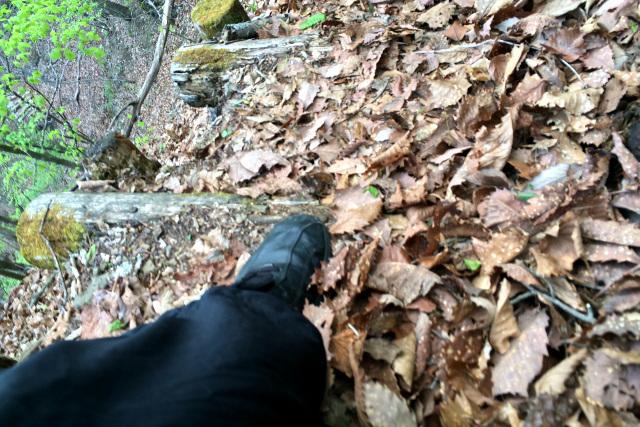しかも枯れ葉を踏むと滑るので、一歩一歩に神経を使う必要がある
