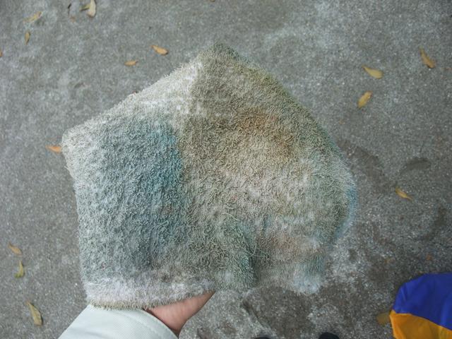 地面の砂の色と同じくらい。結局、なかなかの汚れっぷりに。