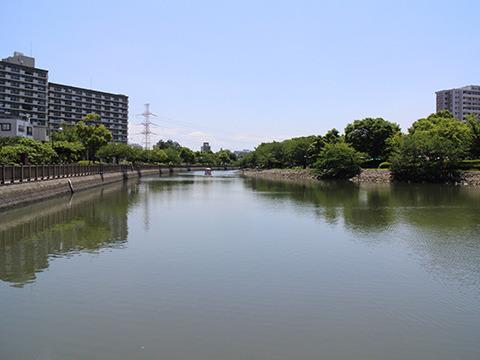 新左近川親水公園。西葛西の駅から徒歩15分くらい。