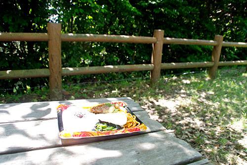 オドヤで買った昼飯を食べているときにアナグマはこなかった。