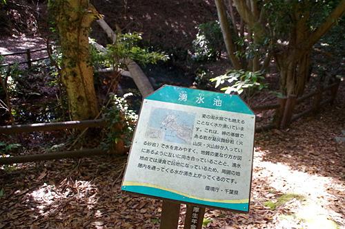 アナグマは水を飲みに池へとくることもあるらしい。