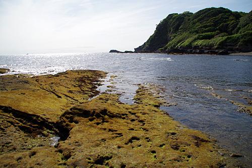 遊泳禁止のワイルドな海岸。