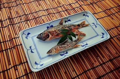 雑魚ことオイカワの塩焼き