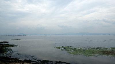 「美味しい魚」の代表格がいる琵琶湖へ。