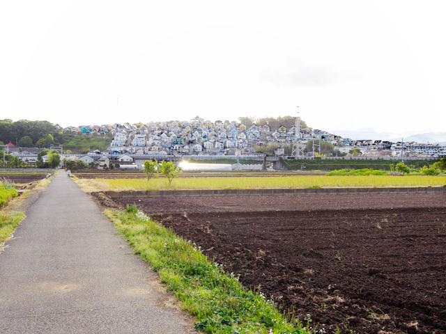 新幹線を挟んで反対側は畑が広がっていました。ときおり通り過ぎる新幹線に「あの窓から見てたんだよなあ」と思うとちょっと不思議な気分。