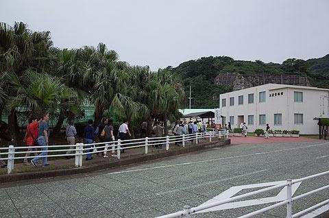 軍艦島上陸ツアーの人々がぞろぞろとやって来た。こんなに大人気なのか軍艦島…(それも平日に)。