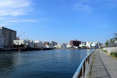 典型的な都市河川といった雰囲気。多少潮の影響があるエリアで、足元にはコイやボラやスズキが泳いでいるのが見える。